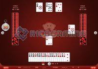 專業遊戲設計開發-麻將,鬥地主,德州撲克_圖片(2)