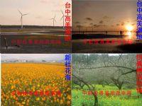 中台灣大景 清境農場日月潭阿里山 一日遊多日遊自由行_圖片(3)