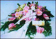 168超級汽球網.演講下垂盆花_圖片(1)