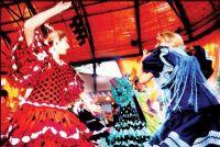 佛拉明哥舞~趕快來感受充滿濃濃西班牙文化的熱情奔放 沒有任何舞蹈經驗也能輕鬆學習!_圖片(1)