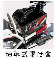 威勝電動腳踏車_TSV27_圖片(3)