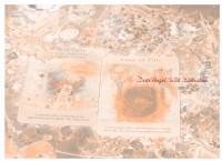 DUO天使塔羅占卜服務費用目錄總覽_圖片(1)