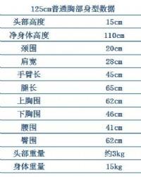 TPE125cm普胸娃娃(小萌)_圖片(4)