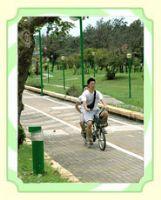 旗津單車遊 _圖片(1)