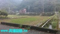 ●新埔 ~ 照東國小/美田地●前後臨路_圖片(3)