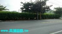 ●楊梅區 ~ ㊣12米休閒農地●近幼獅交流道_圖片(4)