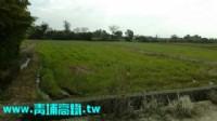 ●新屋區 ~ 休閒農地●_圖片(1)