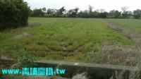 ●新屋區 ~ 休閒農地●_圖片(3)