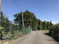 ●龍潭區 ~ 福龍路旁休閒農地●近66快速道路_圖片(2)