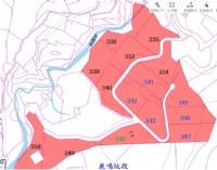 ●新埔 ~ 鹿鳴休閒農地14000坪●照東國小旁_圖片(3)