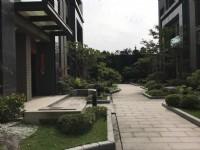 ●青埔高鐵旁電梯豪墅(1)空屋●近青昇路  _圖片(2)