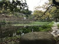 ●新埔 ~ 休閒農地●有池塘_圖片(2)