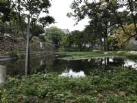 ●新埔 ~ 休閒農地●有池塘_圖片(3)