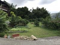 ●新埔 ~ 小木屋開心農場●近照東國小_圖片(3)