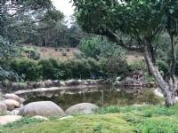 ●新埔鎮 ~ 樂活開心農場●送屋送魚池_圖片(3)