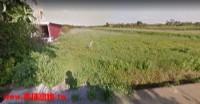 ●觀音區 66道路附近800坪農地●_圖片(1)