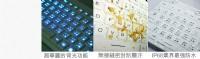 健康快訊:天啊!一般鍵盤細菌居然是馬桶約200倍?_圖片(2)