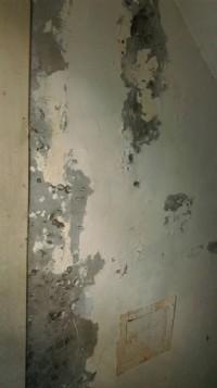 房屋抓漏翻修壁癌防水防熱土木水電磁磚修補_圖片(4)