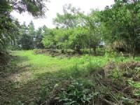 獅頭山休閒漂亮美地*-*合法一棟農舍、山泉水、森林、好山、好水、無污染源_圖片(2)