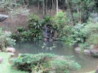 南庄渡假休閒農莊*-*現有一棟合法農舍(38.83坪)、水、電皆齊_圖片(3)