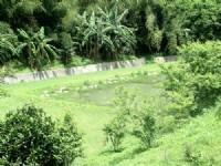 ~在水一方休閒小木屋~*-*環境清幽、退休居住最適合、竹南頭份農地、投資自用_圖片(3)