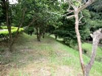 ~在水一方休閒小木屋~*-*環境清幽、退休居住最適合、竹南頭份農地、投資自用_圖片(4)