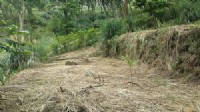 ~頭份在水一方休閒美地~*-*環境清幽、蓋農舍最佳、竹南頭份農地、小額投資_圖片(3)