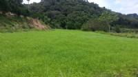 ~漂亮休閒農地~*-*平坦、視野開闊、竹南頭份農地、投資理財、成交快不動產_圖片(2)