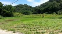~漂亮休閒農地~*-*平坦、視野開闊、竹南頭份農地、投資理財、成交快不動產_圖片(3)
