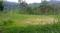 ~三灣面水庫休閒地4~*-*視野開闊、遠觀水庫湖景、竹南頭份農地、591、投資自用_圖片(3)