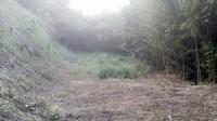 ~三灣面水庫休閒地4~*-*視野開闊、遠觀水庫湖景、竹南頭份農地、591、投資自用_圖片(4)