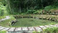 南庄合法農舍*-*溪水環繞、山景森林中、蟲鳴鳥叫 _圖片(4)