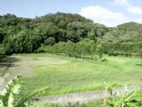 寶山有機休閒漂亮美地^~^新竹縣寶山農地出售_圖片(4)