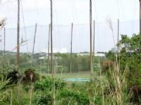 竹南高爾夫球場農地_圖片(2)