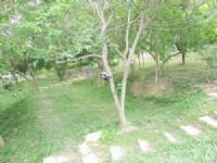 向陽小木屋別墅露營美地*-*現成豪華木屋一棟_圖片(4)
