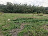 頭份近市區便宜農地*-*頭份土地*-*苗栗買地_圖片(1)