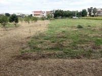 頭份近市區便宜農地*-*苗栗買地、頭份買地、頭份農地_圖片(1)