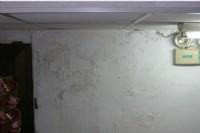 有人可以介紹新竹的壁癌油漆師父嗎 發問者: 0927-102-040陳先生口述狀況就可估價很方便_圖片(1)