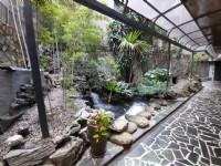 上古雅苑 有瀑布、庭園、藝術品的舒適空間可品茶、品咖啡、品畫是個心靈SPA懂生活的空間_圖片(4)
