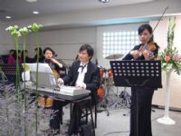 專業婚禮音樂達人  琴朵精品音樂演奏設計公司_圖片(1)