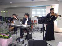 專業宴會演奏演唱達人   琴朵精品舞台音樂_圖片(2)