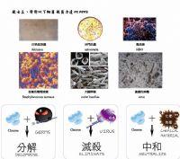 臭氧殺菌龍頭_圖片(2)