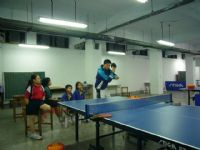 桌球專業教學_圖片(1)