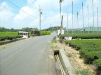 市區農地_圖片(1)