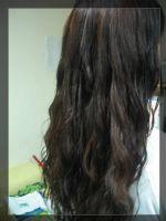 【推薦】行動接髮燙髮染髮超優惠_圖片(1)