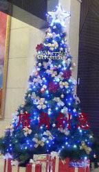 聖誕樹/耶誕樹出租 高雄_圖片(1)